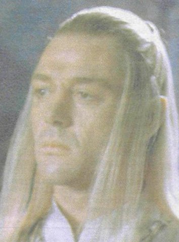 marton csokas in lord of the rings as celeborn the elf queen s  panion
